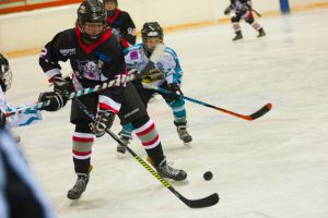 Steyr Junior Panthers - Junior Wings